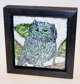 Blue owl Framed 3