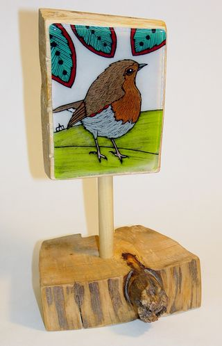 Little Robin 1